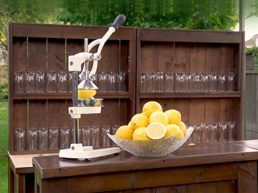 lemonade stand for sale